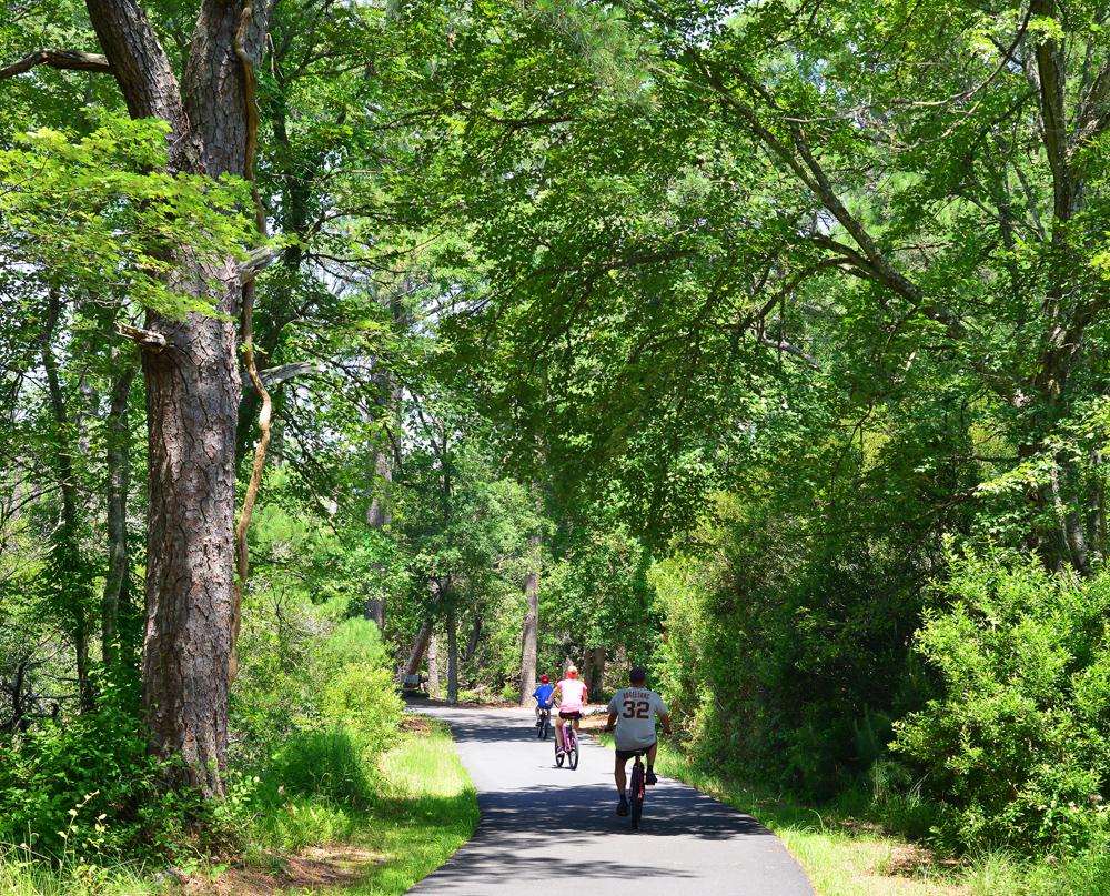 Biking the Woodland Trail