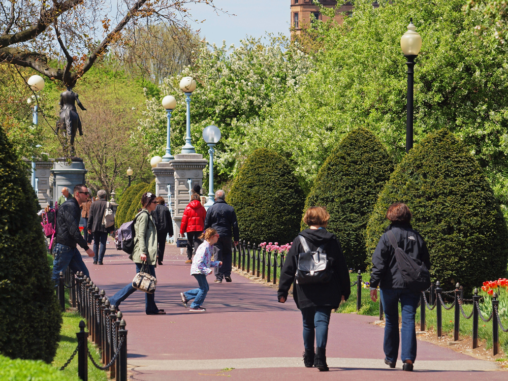 The Public Garden Pathways