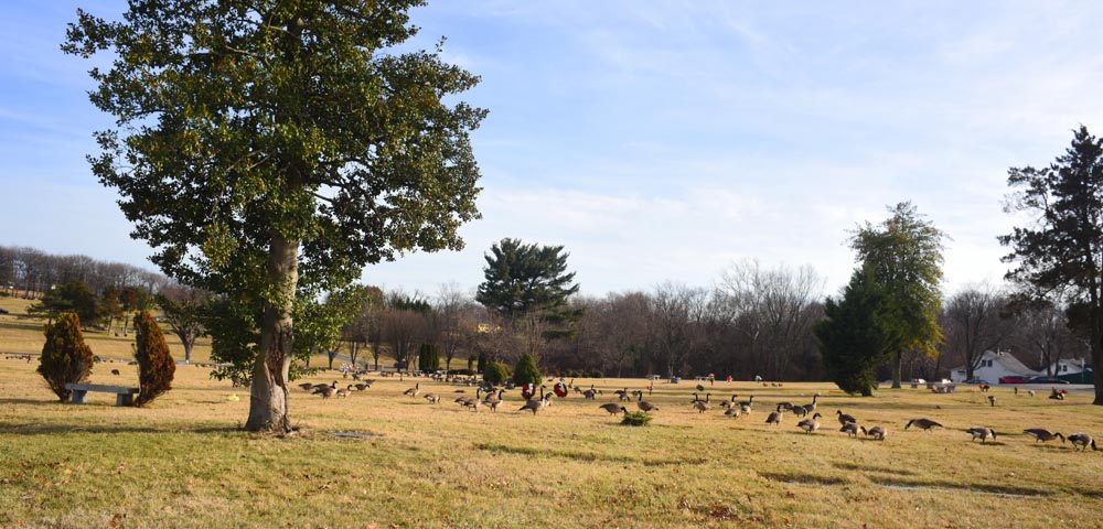 George Washington Cemetery,MD